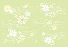 雏菊模式 免版税库存图片