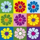 雏菊正方形 库存图片