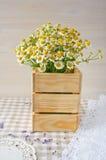 雏菊花束葡萄酒木表面上的 免版税库存图片