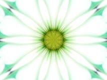 雏菊kalaidescope 库存照片