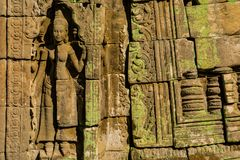 雕刻在一个寺庙石墙的Apsara在吴哥窟 免版税库存图片