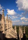雕刻大教堂外部华盛顿 库存照片