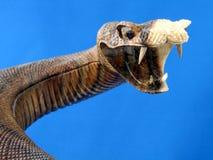 雕刻蛇蛇纹树 免版税库存图片