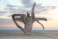 雕刻rastafarian 库存照片