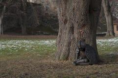 雕塑劳拉福特,奥斯陆 免版税库存图片