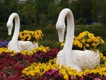 雕塑天鹅 免版税图库摄影