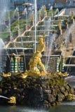 雕塑撕毁一个晴天的狮子的嘴特写镜头的森山在7月 peterhof 库存照片