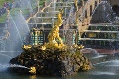 雕塑撕毁狮子的嘴,盛大小瀑布的中央喷泉的森山 peterhof俄国 免版税库存照片