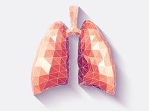 雕琢平面的肺 库存例证