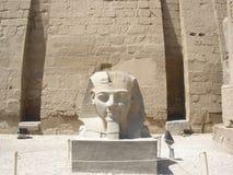 雕象卢克索神庙的(头)拉姆西斯2 免版税库存照片