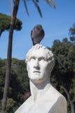 雕象和鸽子 免版税库存图片