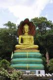 雕象寺庙 免版税图库摄影