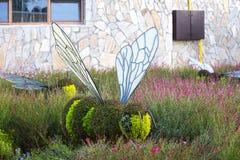 雕象由植物和草本和人做的动物昆虫 免版税库存照片