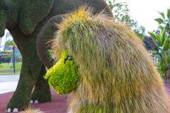 雕象由植物和草本和人做的动物昆虫 库存图片