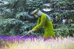 雕象由植物和草本和人做的动物昆虫 库存照片