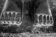 雕象的古铜色脚。 免版税库存图片