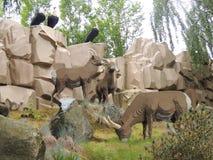 雕,羚羊和山羊,乐高 免版税图库摄影