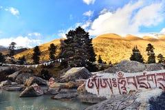 雕刻在湖的Tyibet阿玛尼石头 免版税库存照片
