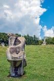 1193雕刻大教堂demetrius纪念碑俄国st石唯一vladimir白色的1197年结构 免版税库存照片