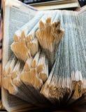 雕刻爪子在书页打印  免版税库存照片