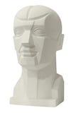 雕刻画的解剖学头 库存照片
