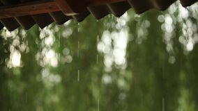 雨下落特写镜头下降在后照从屋顶的在暴雨期间 慢动作录影 股票视频