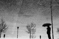 雨反映 库存照片