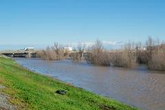 雨在中央加利福尼亚 免版税库存照片