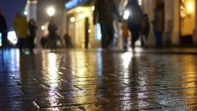 雨城市街道夜猫子 股票视频
