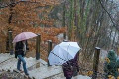 雨天和人们有伞的 图库摄影