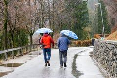 雨天和人们有伞的 库存图片