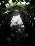 雨天,自然保护木板走道 库存图片