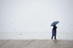 雨天 免版税库存照片