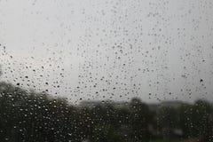 雨天 库存照片