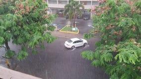 雨季在热带海岛夏威夷美国 库存图片