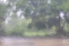 雨季,飞溅雨小滴自然水在玻璃窗在雨季树背景,雨薄雾毛毛雨,雨中下降 免版税图库摄影