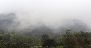 雨山 库存照片