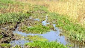 雨弄脏的土农村路 影视素材