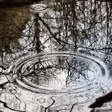 雨投下完善的圈子 免版税库存照片
