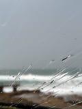 雨挡风玻璃 免版税库存照片