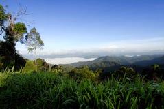 雨林山 免版税库存照片