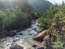 雨林河自然风景 放松的美好和寂静空间 伊朗北部,Gilan原始地区  库存照片