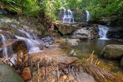 雨林瀑布 免版税图库摄影