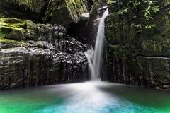 雨林瀑布 免版税库存图片