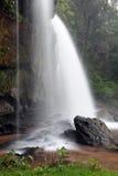 雨林热带瀑布 库存照片
