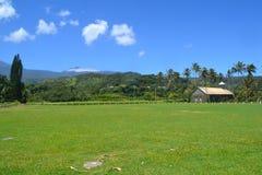雨林的夏威夷教会 库存图片