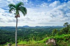 雨林的看法,山,从小山 免版税库存照片
