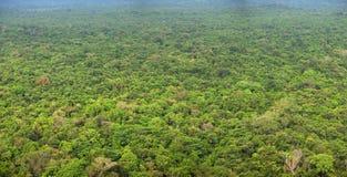 雨林 在视图之上 全景照片 锡吉里耶, Sri Lan 图库摄影