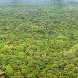 雨林 在视图之上 锡吉里耶, Polonnaruwa,斯里兰卡 库存图片