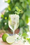 雨果香宾饮料用elderflower糖浆、薄菏和石灰 图库摄影